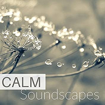 Calm Soundscapes - Zen Feng Shui Spa Music for Meditating and Practicing Yoga