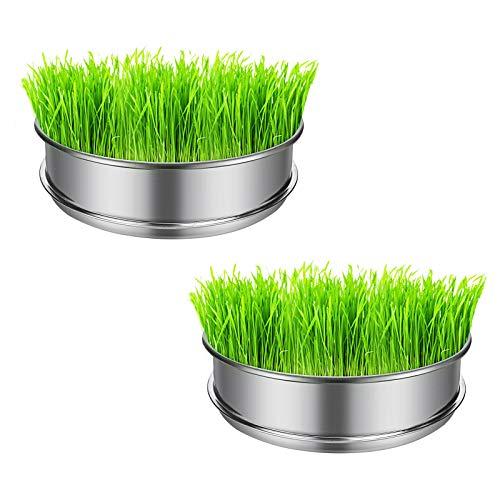 Whchiy 2 bandejas de germinación de acero inoxidable, sin base, apilables, para brocólicos orgánicos férricos, hierba de trigo, semillas de alfalfa, fenogreco, granas de mungu y más (S)