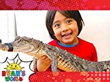 Ryan's Reptile Surprise!