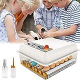 Crtkoiwa Incubadora de Huevos Automático da per 9--16, incubadoras de huevos para incubar huevos de pavo, pato, ganso, codorniz, pollo (16)