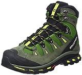 Salomon Quest 4D 2 GTX, Zapatos de High Rise Senderismo para Hombre, Verde (Tonic Green/Night Forest/Green Glowow), 41 1/3 EU