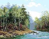 Diy Pintura Por Números Corriente Pintura Digital Pintura A Mano Pura Principiante Set Niños Principiantes Adultos Pintura Al Óleo Kit 40 * 50Cm