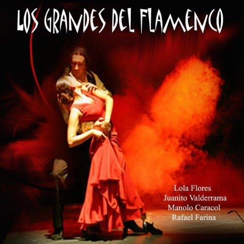 Various artists feat. Juanito Valderrama, Rafael Farina, Manolo Caracol & Lola Flores