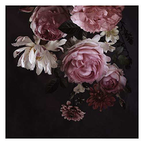 Vlies Fototapete Rosa Blumen auf Schwarz Vliestapete, 240cm x 240cm