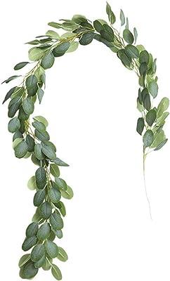 SparY - Planta de Hierba de Hoja Verde para el hogar, orquídea de ...