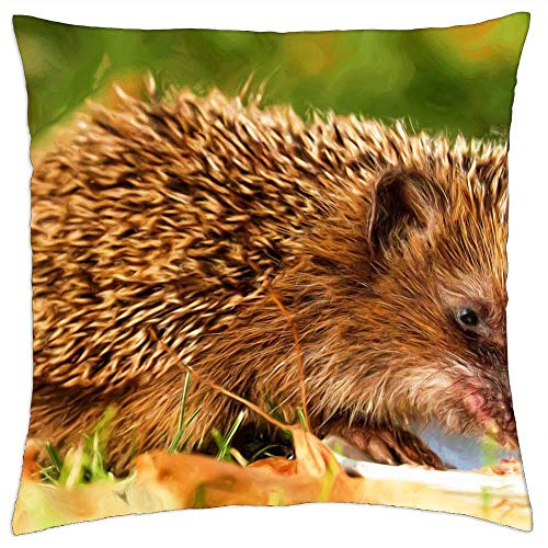 LESGAULEST Throw Pillow Cover (24x24 inch) - Painting Oil Painting Photo Painting Hedgehog 1