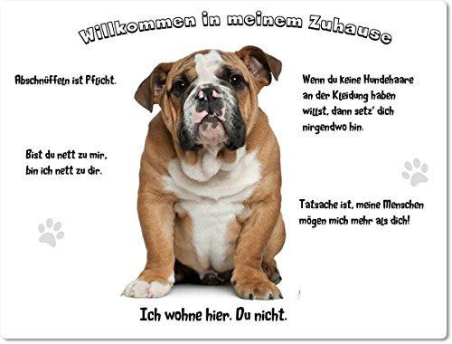 Merchandise for Fans Blechschild/Warnschild/Türschild - Aluminium - 30x40cm - - Willkommen in Meinem Zuhause - Motiv: Englische Bulldogge - 02