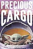 ERIK - Póster Star Wars The Mandalorian Precious Cargo, Baby Yoda, Grogu (91.5 x 61 cm)
