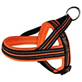 Easy Dog Harness for Small Breed Pug Life with Easy On and Off Reflective Vest and Padded Adjustable Gentle Lead(Orange,XS)