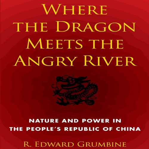 Where the Dragon Meets the Angry River audiobook cover art