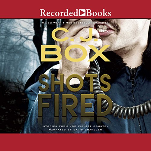 Shots Fired audiobook cover art