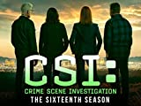 CSI: Crime Scene Investigation - Season 16