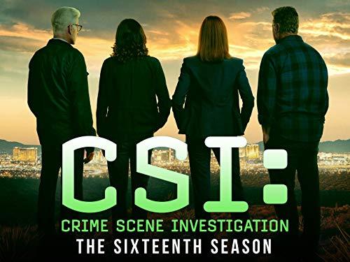 CSI: Crime Scene Investigation - Season 16