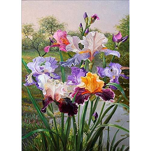 5D Diamond Painting Kits, Colorful Iris Flowers
