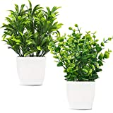 Whonline 2pcs Artificial Mini Potted Plants Fake Plastic Eucalyptus Leaves Plants for HomeOffice Desk Room Greenery Decoration