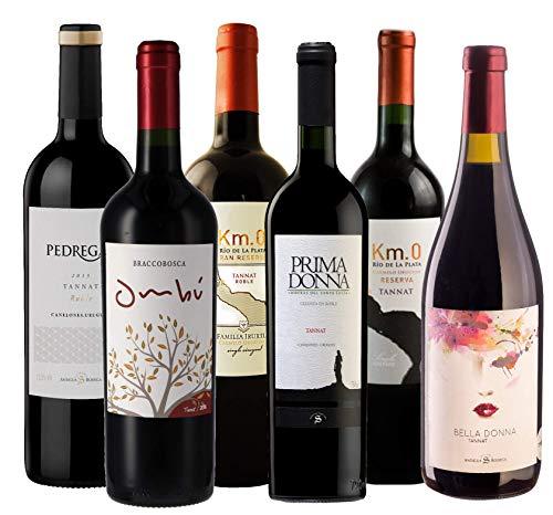 Atlantik Weine, Südamerika Weinpaket Best of Tannat mit Rotwein aus Uruguay, 6 Tannat aus drei Weinregionen Uruguays (6 x 0,75l)