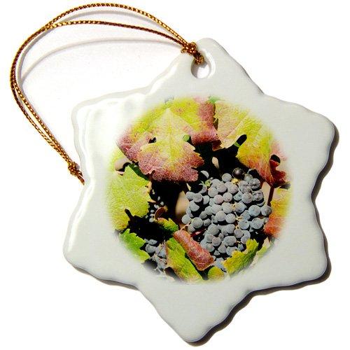 3dRose California, Napa Valley, Sonoma County. Purple grapes on The vine. - Snowflake Ornament, 3-inch (orn_190300_1)