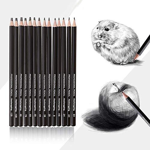 Juego de 14 lápices profesionales de dibujo de grafito, con una caja...