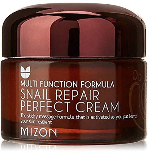 MIZON Crème Réparatrice Anti-âge Escargot Extract Snail Repair Perfect Cream 50ml