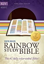 KJV Rainbow Study Bible, Brown/Chestnut LeatherTouch