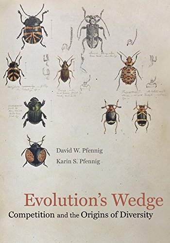Pfennig, D: Evolution's Wedge: Competition and the Origins of Diversity (Organisms and Environments, Band 12)
