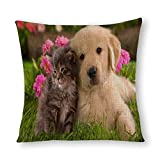 Funda de almohada con diseño de perros y gatos
