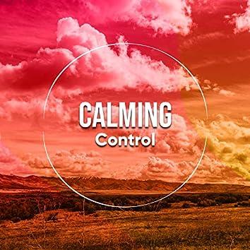 # Calming Control