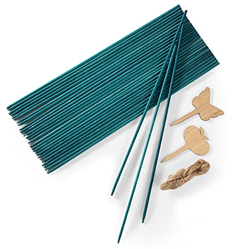 Wood Plant Stakes 30 PCS Garden Green Bamboo Sticks Floral Plant Support, Wooden Sign Posting Flower Pot Stakes, 15 Inches