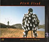 Delicate Sound of Thunder [Audio CD] Unknown