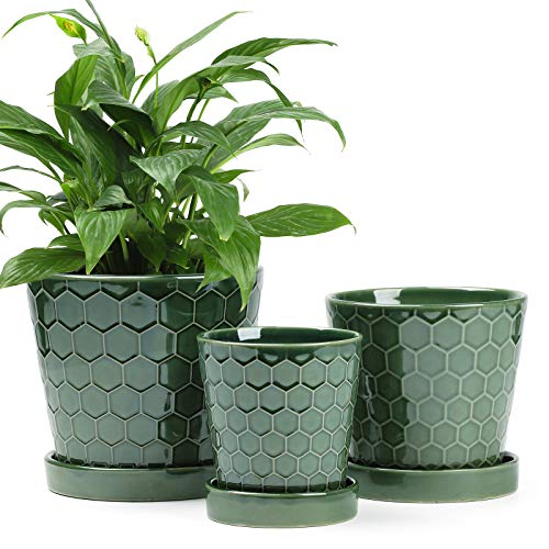 """BUYMAX Succulent Planter –4""""+5""""+6"""" inch Ceramic Flower Pot with Drainage..."""