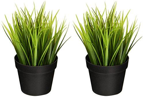 Ikea Planta artificial en maceta, hierba de trigo, 22,86 cm, natural, decoración...