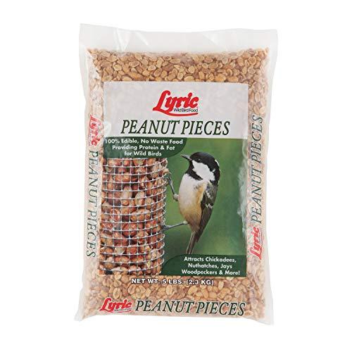 Lyric 2647464 Peanut Pieces Wild Bird Food, 5 lb
