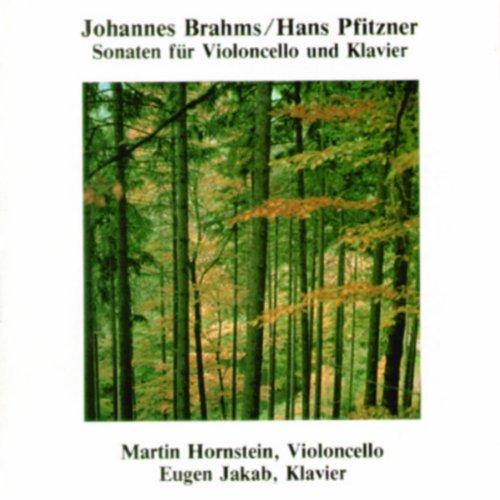 Sonate für Violoncello und Klavier in Fis-moll, Op.1 3.Satz - So schnell als möglich, fast durchweg