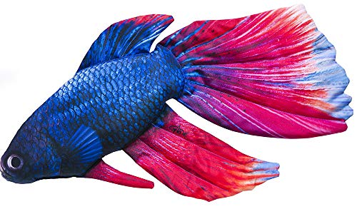 Gaby DER SIAMESISCHE KAMPFFISCH 53cm Kuscheltier Stofftier Fisch Polyester