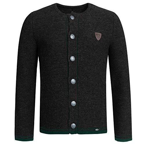 GIESSWEIN Strickjacke Jasper - Strick Jacke Herren, 100% Wolle, Trachtenjacke Herren, Strickjacke mit Knöpfen, warme Bekleidung aus Schurwolle, atmungsaktiv