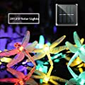 MZD8391 Solar String Lights, 20 LED Dragonfly String Lights, Waterproof Decorative String Lights for Patio, Garden, Gate, Yard, Party, Wedding (Solar Dragonfly Light)