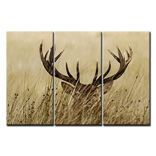 3 Panel Deer Stag Wall Art