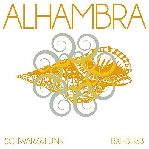 Schwarz & Funk
