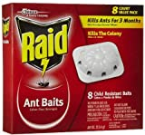 Raid 8 Count Ant Baits (Pack of 3)