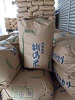 令和元年産 新潟県産 コシヒカリ 玄米 10kg 白米9kg×2