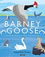 Barney Goose: A Wild Atlantic Way Adventure