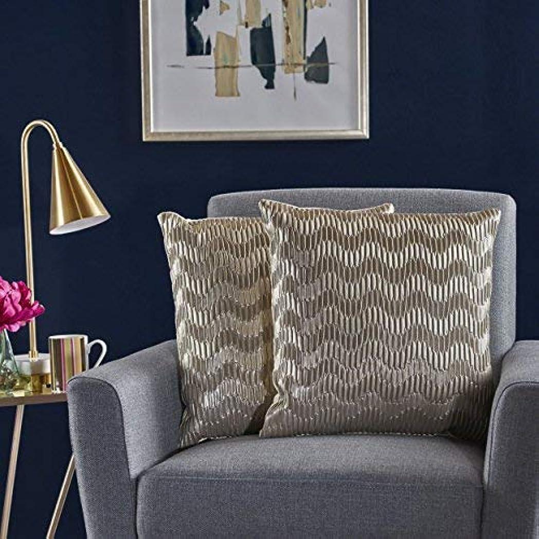 重くする逆さまに職業Christopher Knight Home Rakel Silver Faux Leather Posh Pillows (Set of 2) [並行輸入品]