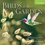 Audubon Birds in the Garden Wall Calendar 2020