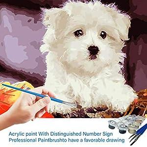 DIY Malen nach Zahlen-Ölgemälde Geschenk für Erwachsene Kinder Malen Nach Zahlen Kits Home Haus Dekor – Welpe (Ohne Rahmen) -40 * 50 cm