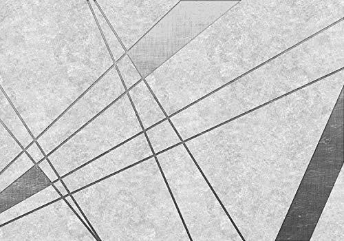 wandmotiv24 Fototapete schwarz-weiß Abstraktes Modernes, XXL 400 x 280 cm - 8 Teile, Fototapeten, Wandbild, Motivtapeten, Vlies-Tapeten, Vintage, Beton, abstrakt M1207