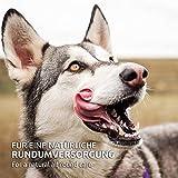 AniForte® PureNature easyBarf Single Protein 400g 100% Fleisch Hundefutter- Naturprodukt für Hunde (Pferd Pur, 6x400g) - 2