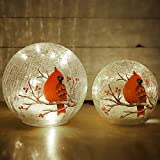 Crackle Glass Ball Lights Cardinal Bird Pattern Table Lamps Battery Powered 2 Pack (6in & 5 in)LED Night Light for Home Nursery Breastfeeding Bedroom Party Birthday Wedding Christmas Decoration