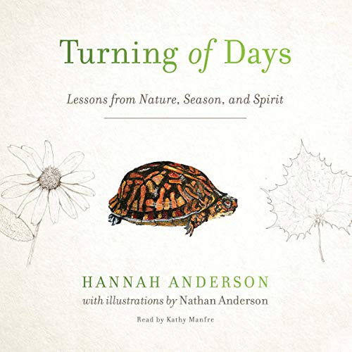 Turning of Days cover art