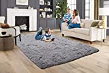 ACTCUT Super Soft Indoor Modern Shag Area Silky Smooth Rugs Fluffy Anti-Skid Shaggy Area Rug Dining Living Room Carpet Comfy Bedroom Floor 5.3' x 7.3' Grey
