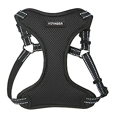 Best Pet Supplies Voyager Step-in Flex Dog Harness - All Weather Mesh, Step in Adjustable Harness for Small and Medium Dogs - Black, Small by Best Pet Supplies